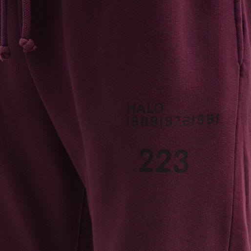 HALO COTTON SWEATPANT, BORDEAUX, packshot
