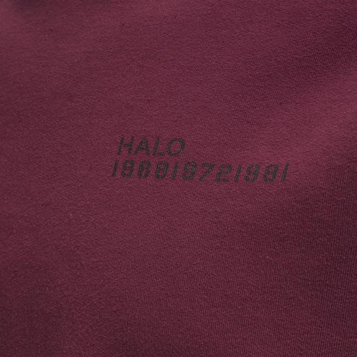 HALO COTTON CREW, BORDEAUX, packshot